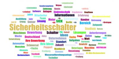 Screenshot Word-Cloud. Die häufigsten Begriffe.